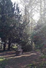 Leise Park 03