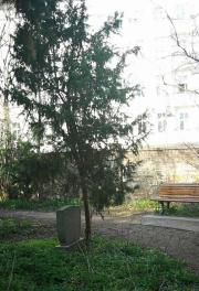 Leise Park 04
